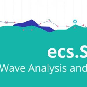 Simple Wave Analysis and Trading by Chris Svorcik