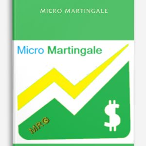 Micro Martingale