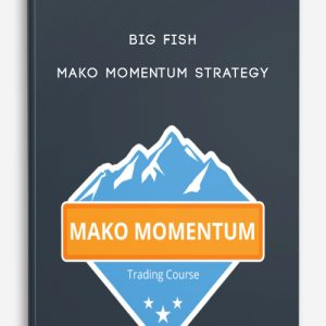 Big Fish Mako Momentum Strategy – Base Camp Trading