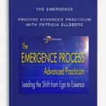 The-Emergence-Process-Advanced-Practicum-with-Patricia-Ellsberg-400×556